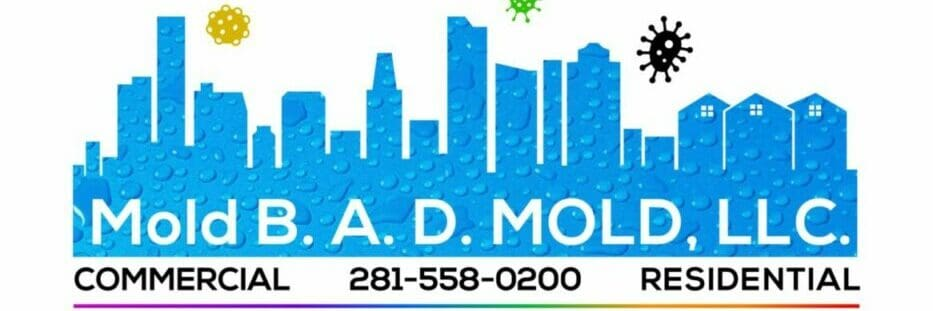 Houston Mold Inspection And Cleanup Mold B A D Mold